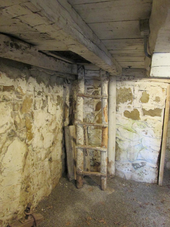Cabin cellar